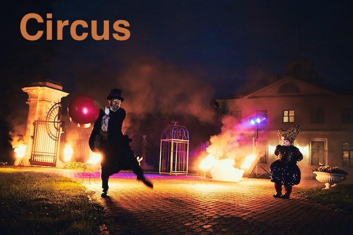 на цирковую тематику «Циркус»